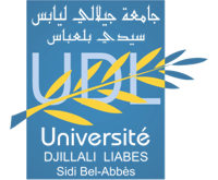 Logo UDLtransparent